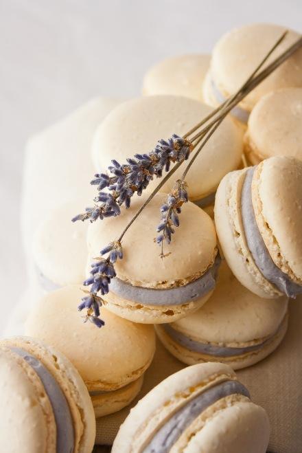 lavendermacarons8-2